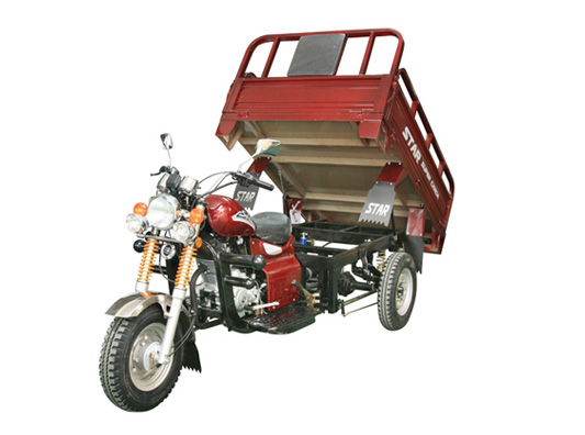 Cargo Tricycle TR-13