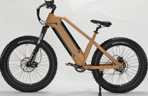 Double Battery Lithium Ebike
